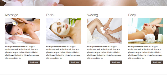 Spa WordPress Theme - Clean service overview