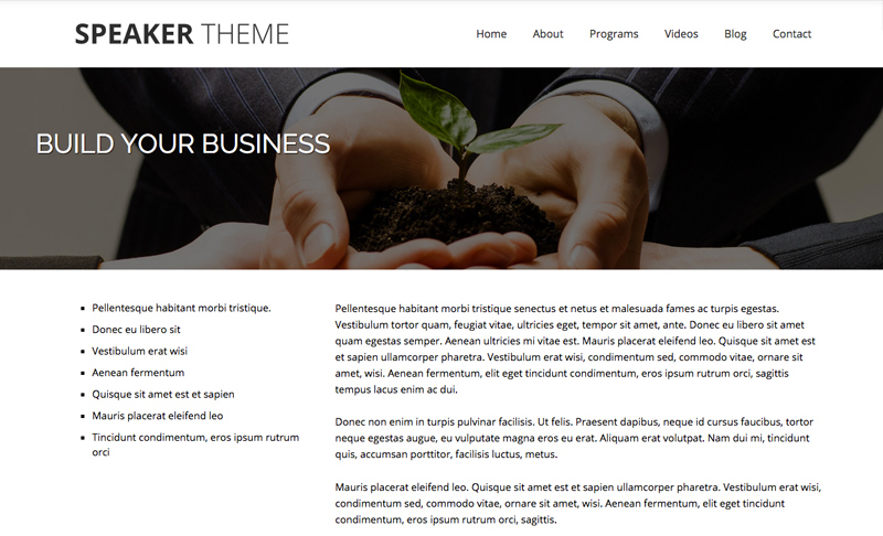 Speaker WordPress Theme - Beautiful service details