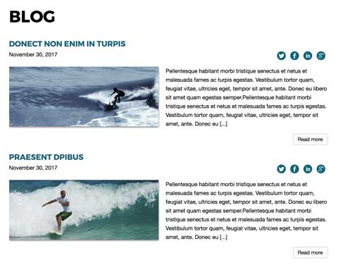 Surfing WordPress Theme - News blog included