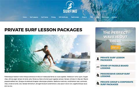 Surfing WordPress Theme - Service details