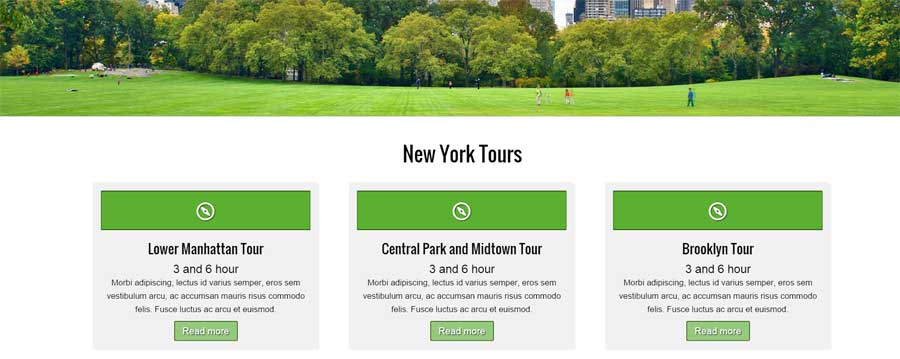 Tour Guide WordPress Theme - Service pages