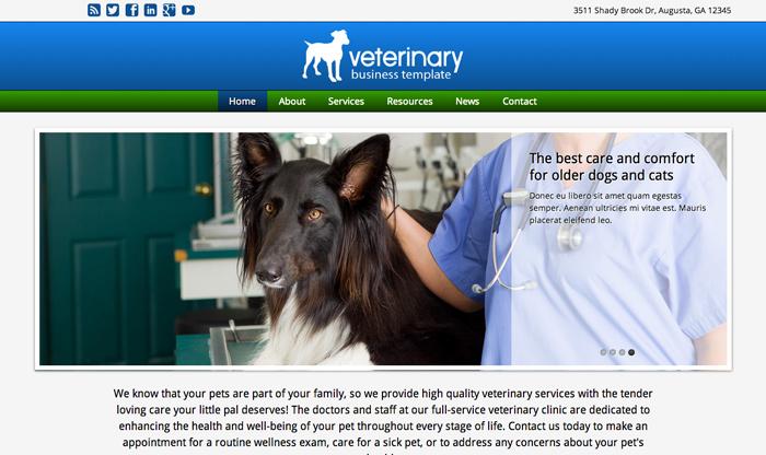 Veterinary WordPress Theme - Clean, modern design