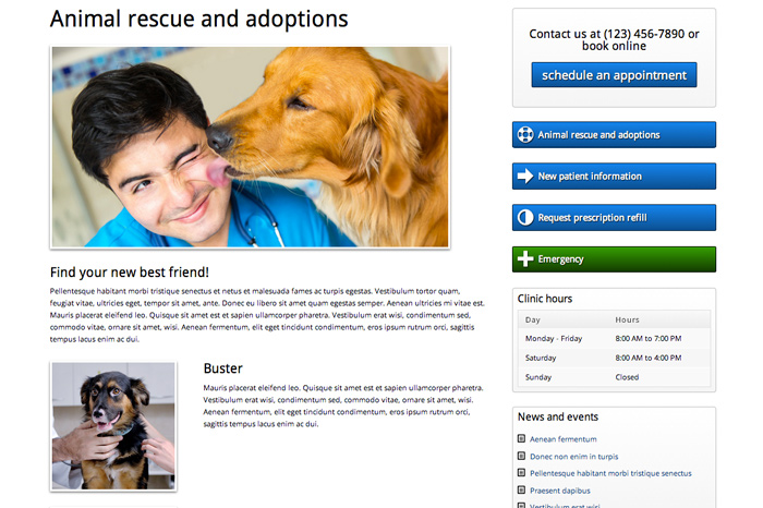 Veterinary WordPress Theme - Pet adoptions page