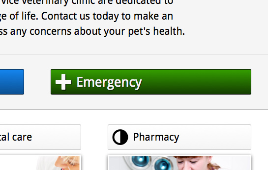 Veterinary WordPress Theme - Convincing call-to-actions
