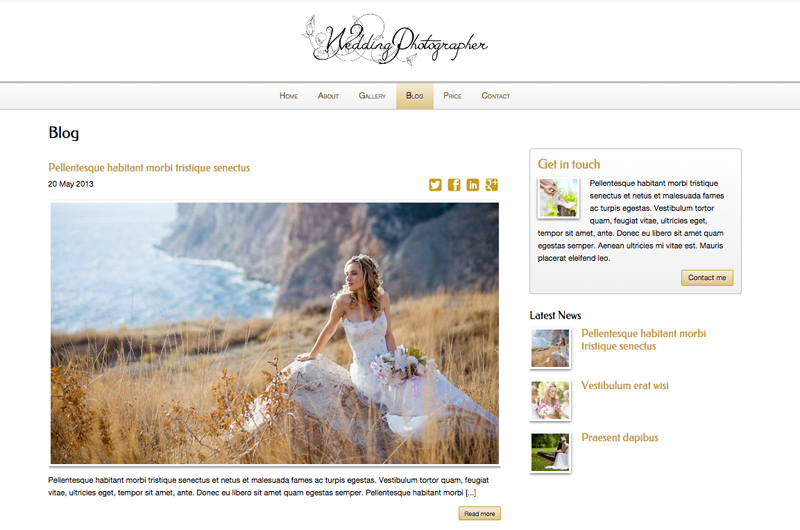 Wedding Photographer WordPress Theme - Classic blog included