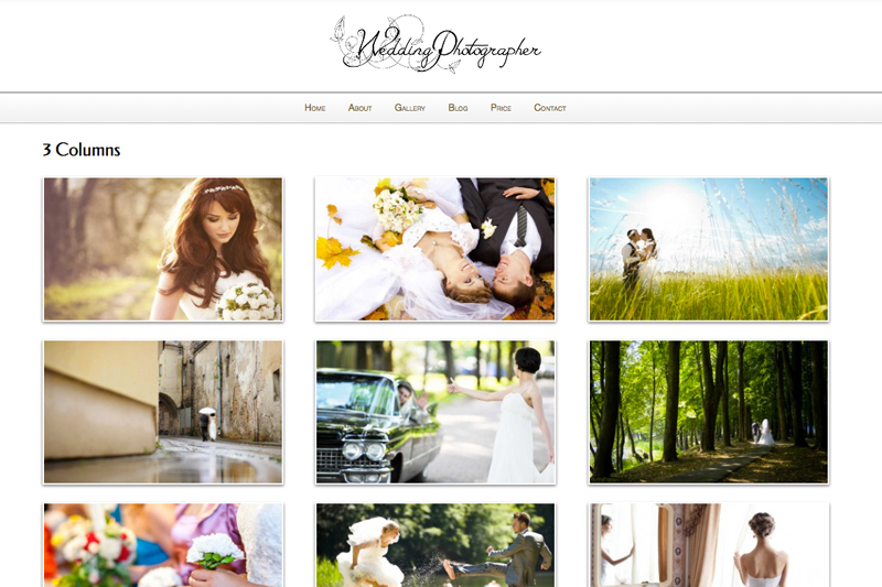Wedding Photographer WordPress Theme - Integrated image gallery
