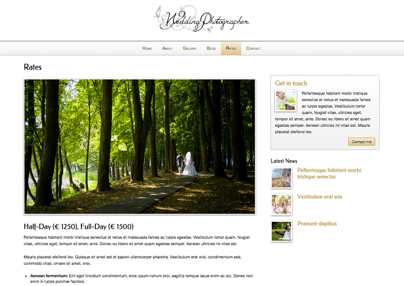 Wedding Photographer WordPress Theme - Pricing overview