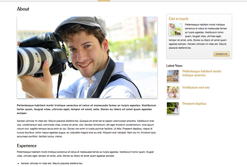 Wedding Photographer WordPress Theme - wedding photographers overview