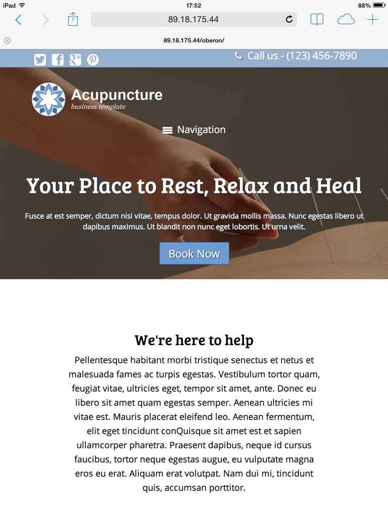 tablet screenshot Acupuncture WordPress Theme