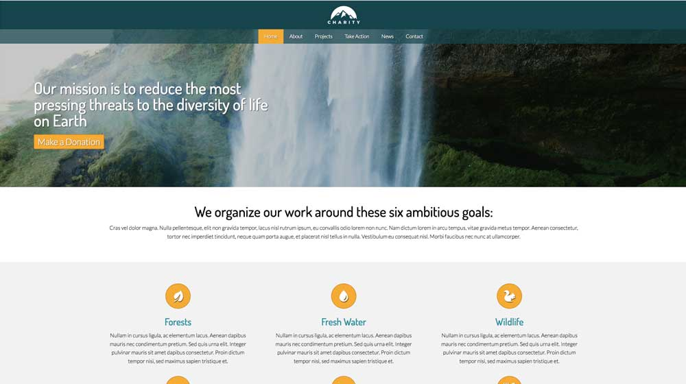 desktop screenshot Charity WordPress Theme