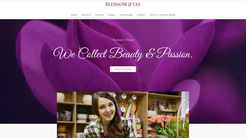 desktop screenshot Florist Astra Starter Site