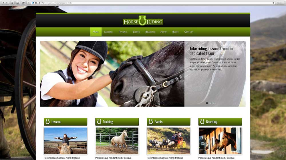 desktop screenshot Horse Riding WordPress Theme