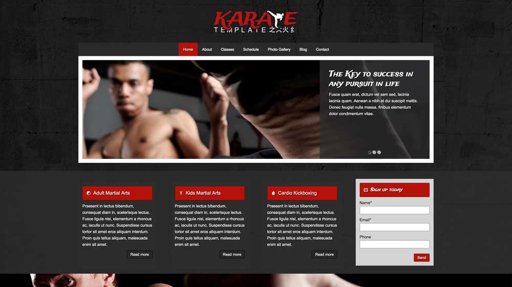 desktop screenshot Karate WordPress Theme