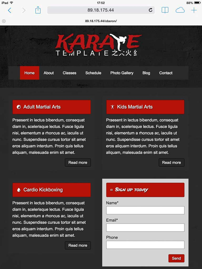 tablet screenshot Karate WordPress Theme