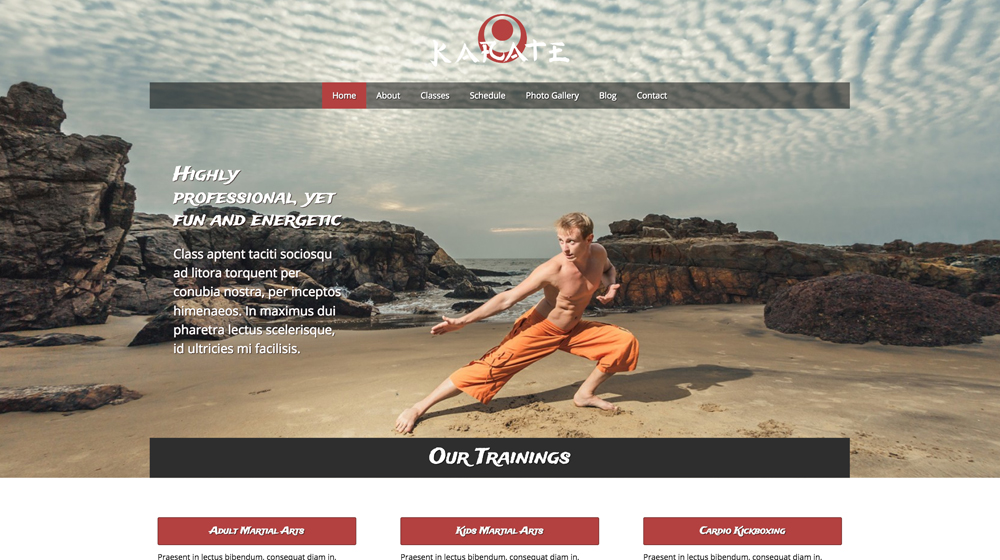 desktop screenshot MMA WordPress Theme