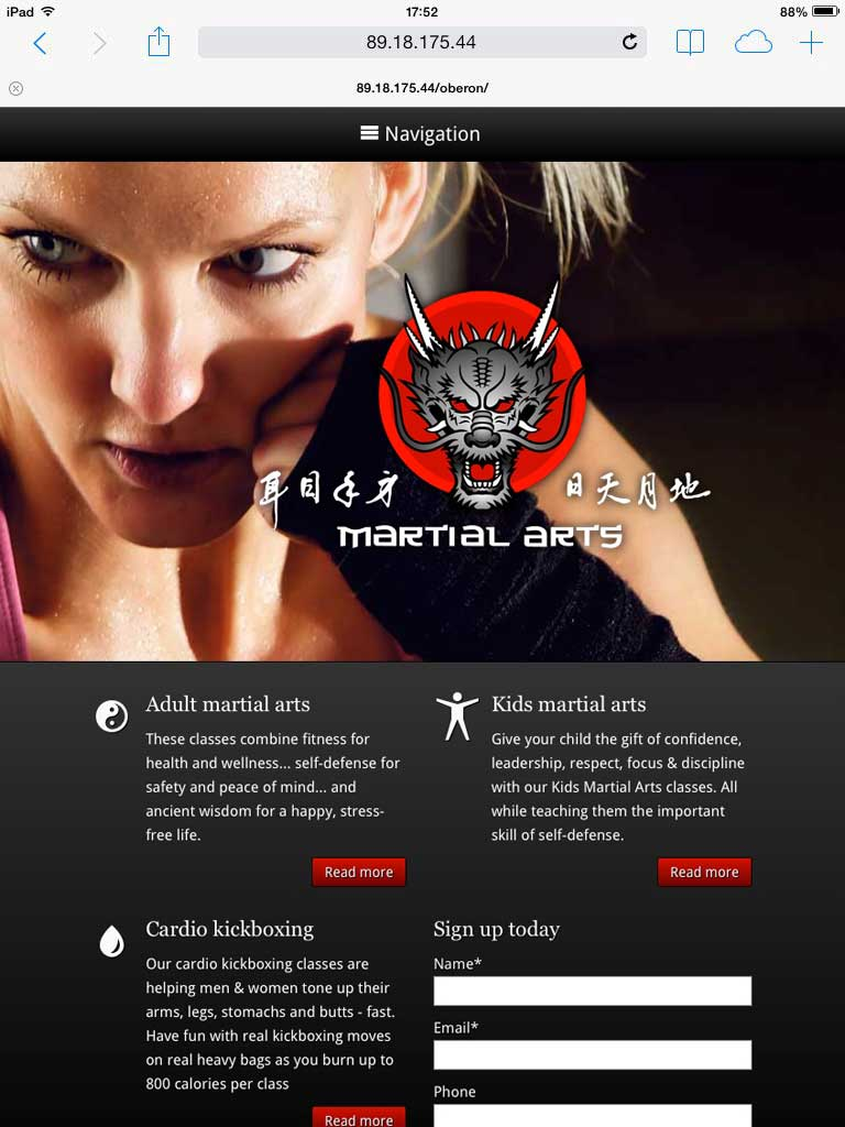 tablet screenshot Martial Arts WordPress Theme