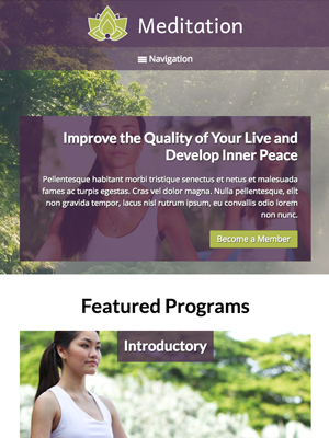 tablet screenshot Ayurveda WordPress Theme