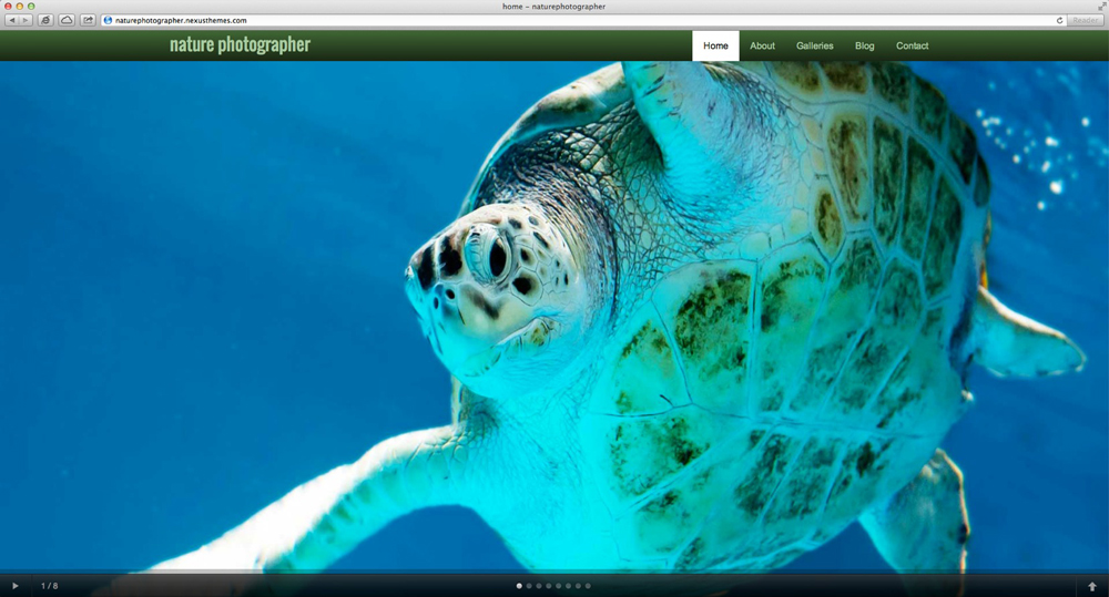 desktop screenshot Nature Photographer WordPress Theme