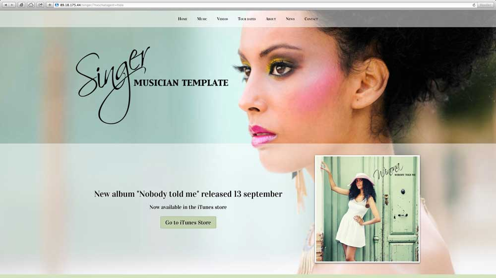 desktop screenshot Singer WordPress Theme