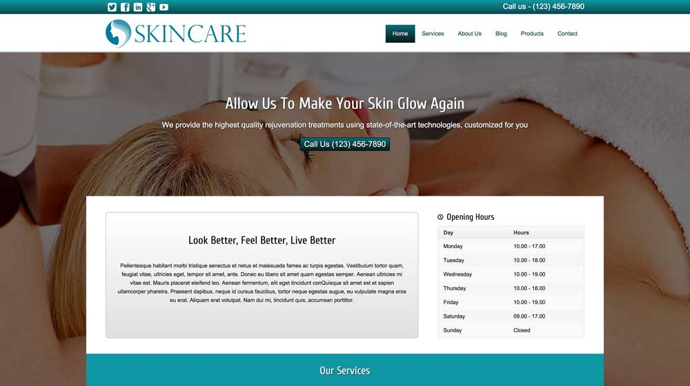 desktop screenshot Skin Care WordPress Theme