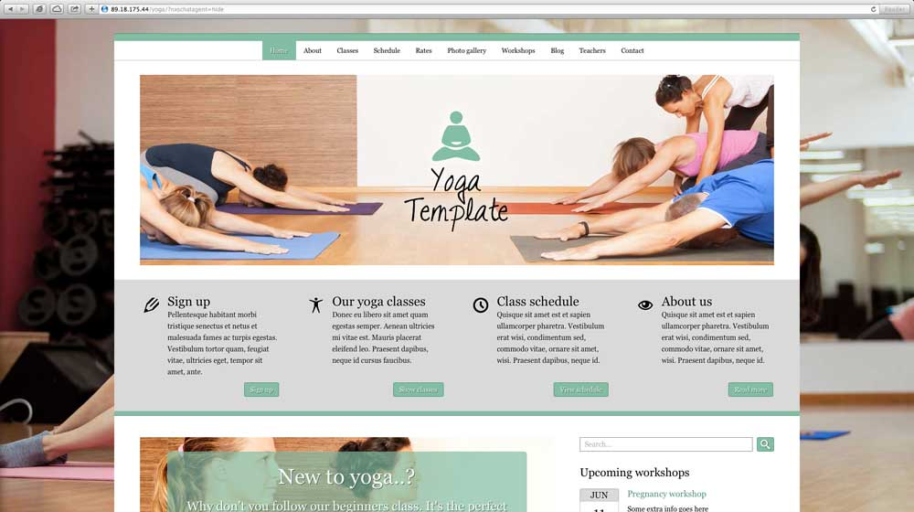 desktop screenshot Anahata WordPress Theme