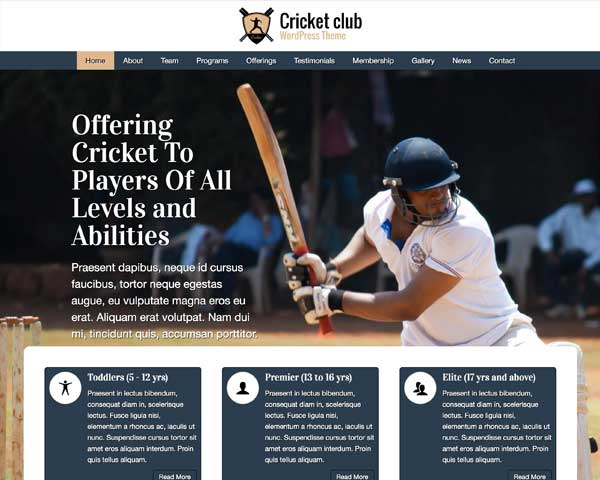 Cricket Club WordPress Theme thumbnail