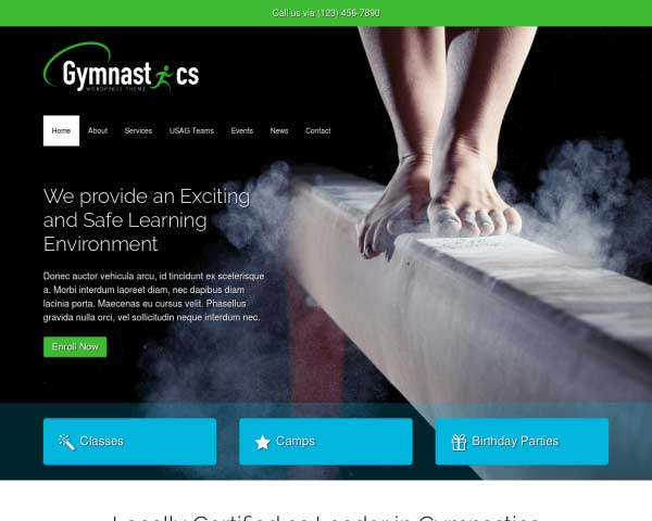 Gymnastics WordPress Theme thumbnail