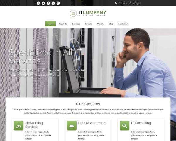 IT Company WordPress Theme thumbnail
