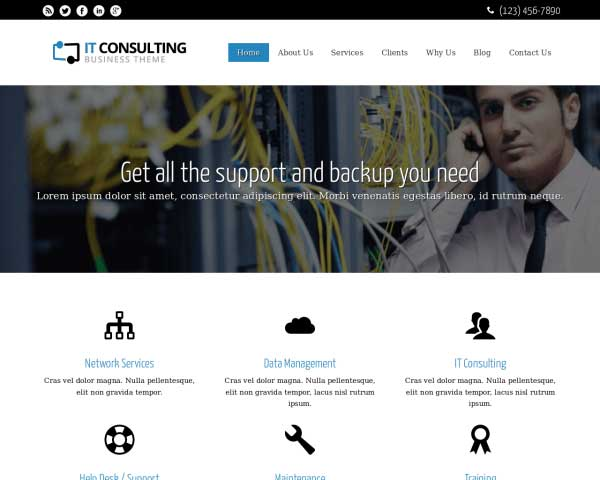 IT Consulting WordPress Theme thumbnail