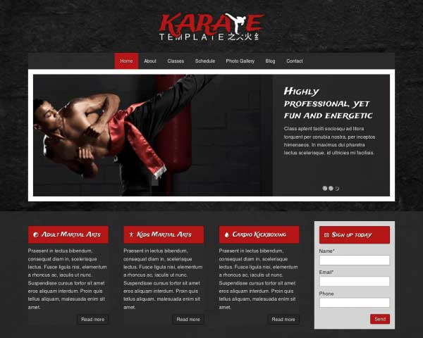 Karate WordPress Theme thumbnail