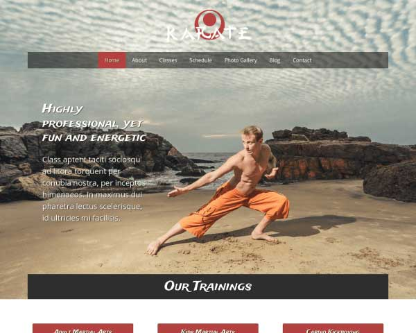 MMA WordPress Theme thumbnail
