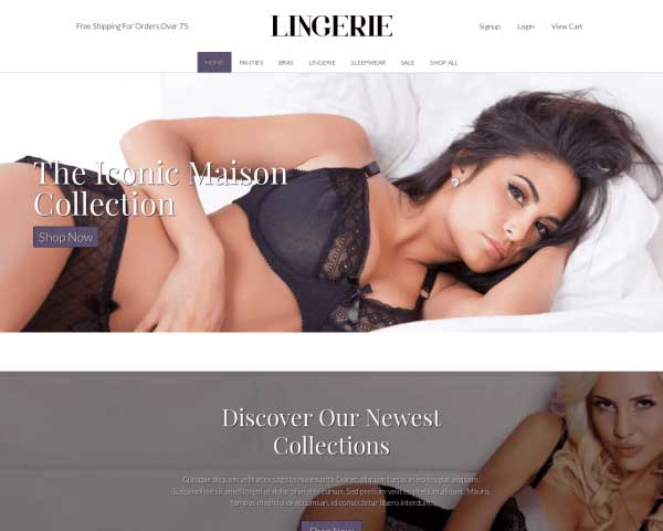 Lingerie WordPress Theme thumbnail