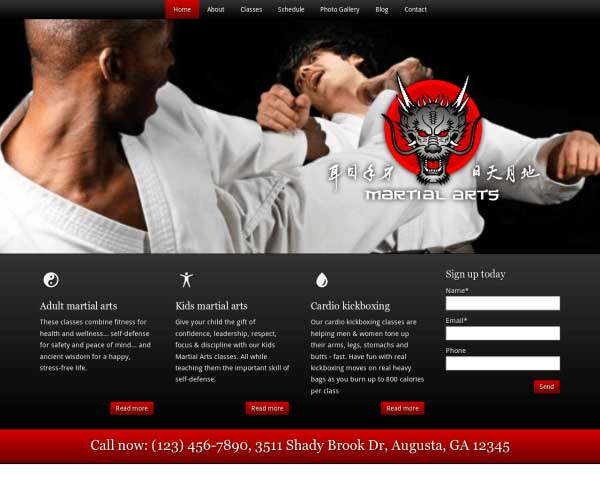 Martial Arts WordPress Theme thumbnail