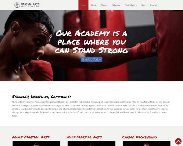 Vechtsporten WordPress Theme thumbnail