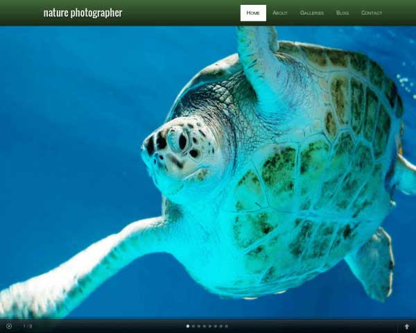 Nature Photographer WordPress Theme thumbnail