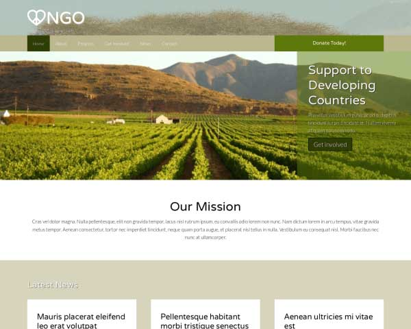 NGO WordPress Theme thumbnail