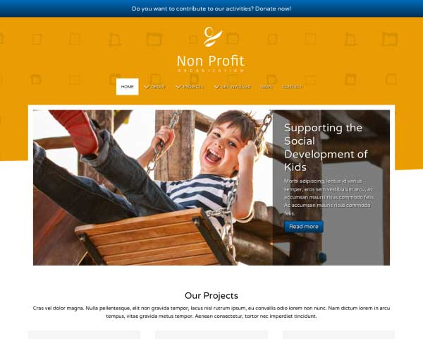 Non-profit WordPress Theme thumbnail