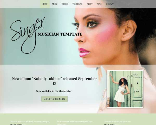 Singer WordPress Theme thumbnail