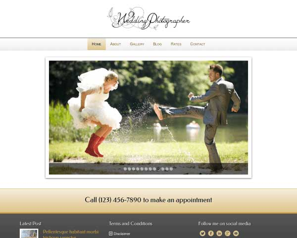 Wedding Photographer WordPress Theme thumbnail