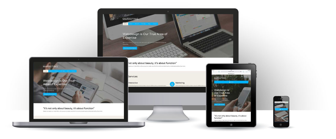 mobile responsive Internet Marketing WordPress Theme