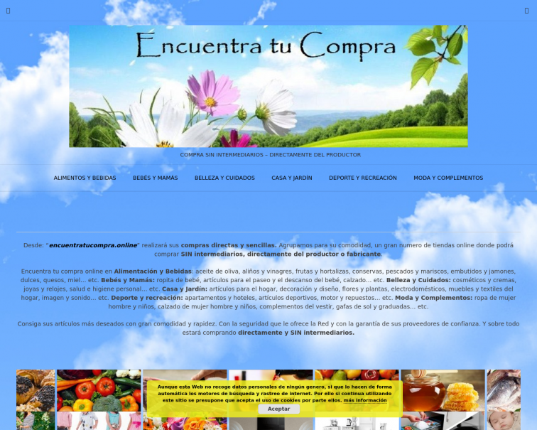 Screenshot of encuentratucompra.online
