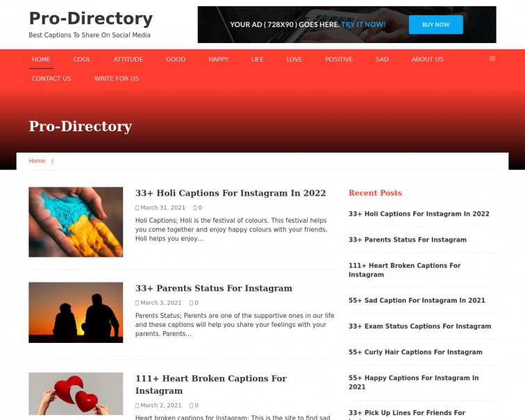 Screenshot of prodirectory.in