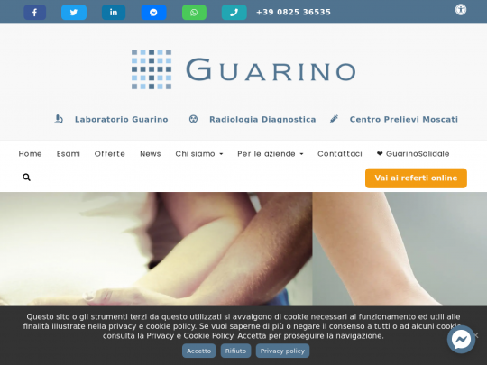 Tablet screenshot of www.guarinolab.it