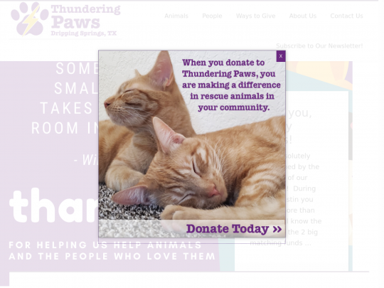 Tablet screenshot of www.thunderingpaws.org