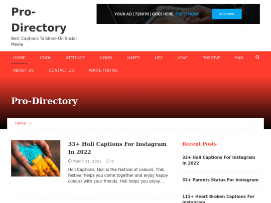 Tablet screenshot of prodirectory.in