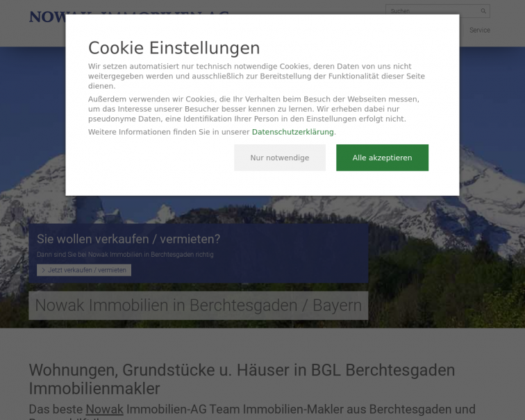Screenshot of www.nowak-ag.de