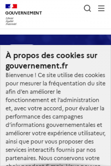Mobile screenshot of www.gouvernement.fr