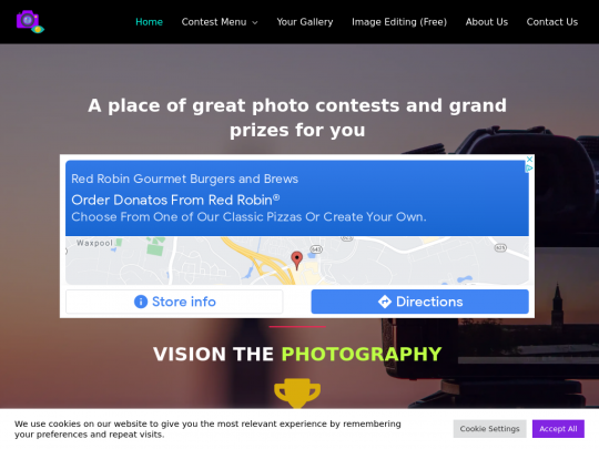 Tablet screenshot of visionthephotography.online