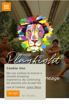 Mobile screenshot of www.playfight.org