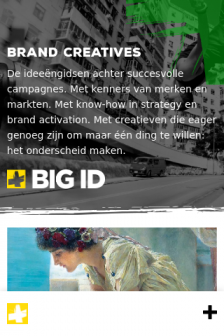 Mobile screenshot of bigid.nl